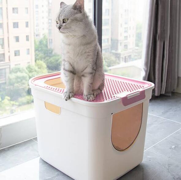 อย่าละเลยห้องน้ำของแมว! การวิเคราะห์ข้อดีและข้อเสียของครอกแมว 5 ชนิด