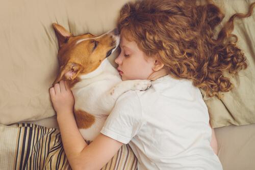 สุนัขอาจประสบกับภาวะสมองเสื่อมอาการต่อไปนี้ควรนำไปให้สัตวแพทย์โดยเร็วที่สุด