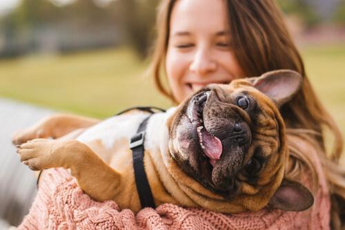หนึ่งในปัญหาที่พบบ่อยของเจ้าของ! สุนัขเข้าใจมนุษย์หรือไม่?